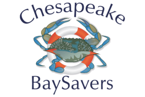 Non profit, Chesapeake